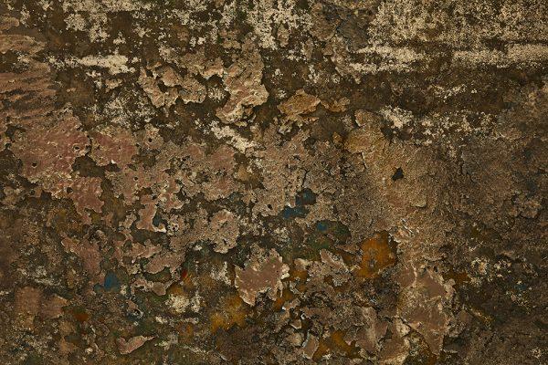 Angelo-santangelo-human-nature-texture-1-Horno-Virtual-Gallery-galeria-arte-fotografia-artistica-decorativa-decoracion-art-graffiti