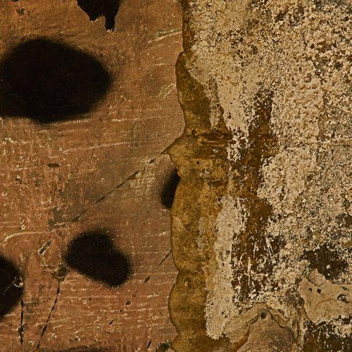 Angelo-santangelo-human-nature-texture-4-Horno-Virtual-Gallery-galeria-arte-fotografia-artistica-decorativa-decoracion-art-graffiti