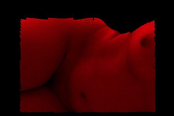 Hummo-reconstruction-body-Horno-Virtual-Gallery-galeria-arte-fotografia-artistica-decorativa-decoracion-art