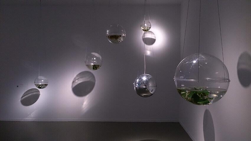 ineditos-nuria-montclus-casa-encendida-exposicion-Horno-galeria-arte-online-fotografia-artistica-3