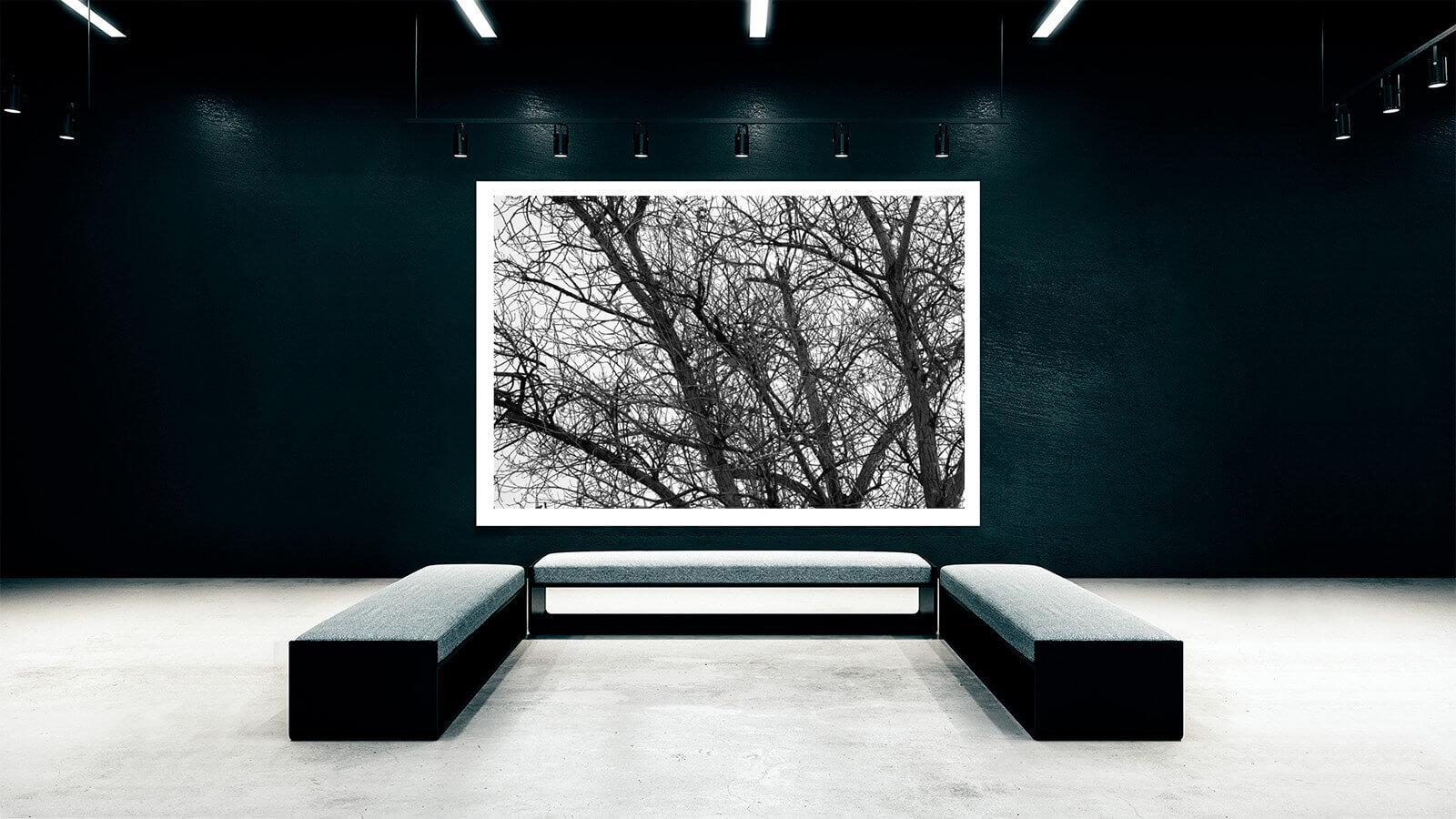 TAIYOKO-STUDIO-exposicion-Horno-Virtual-Gallery-branches-galeria-arte-fotografia-artistica-edicion-limitada-decoracion-2