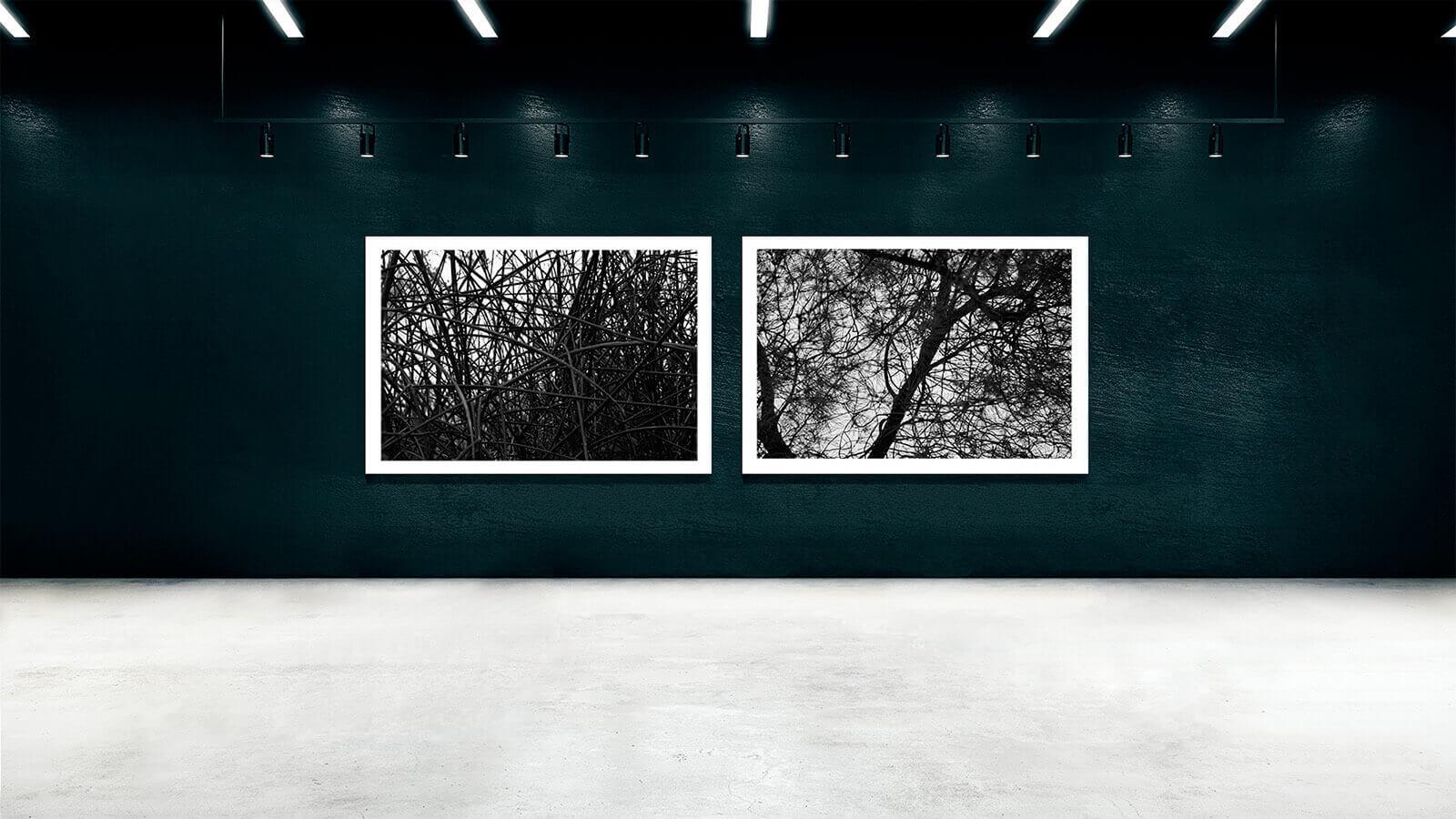 TAIYOKO-STUDIO-exposicion-Horno-Virtual-Gallery-branches-galeria-arte-fotografia-artistica-edicion-limitada-decoracion