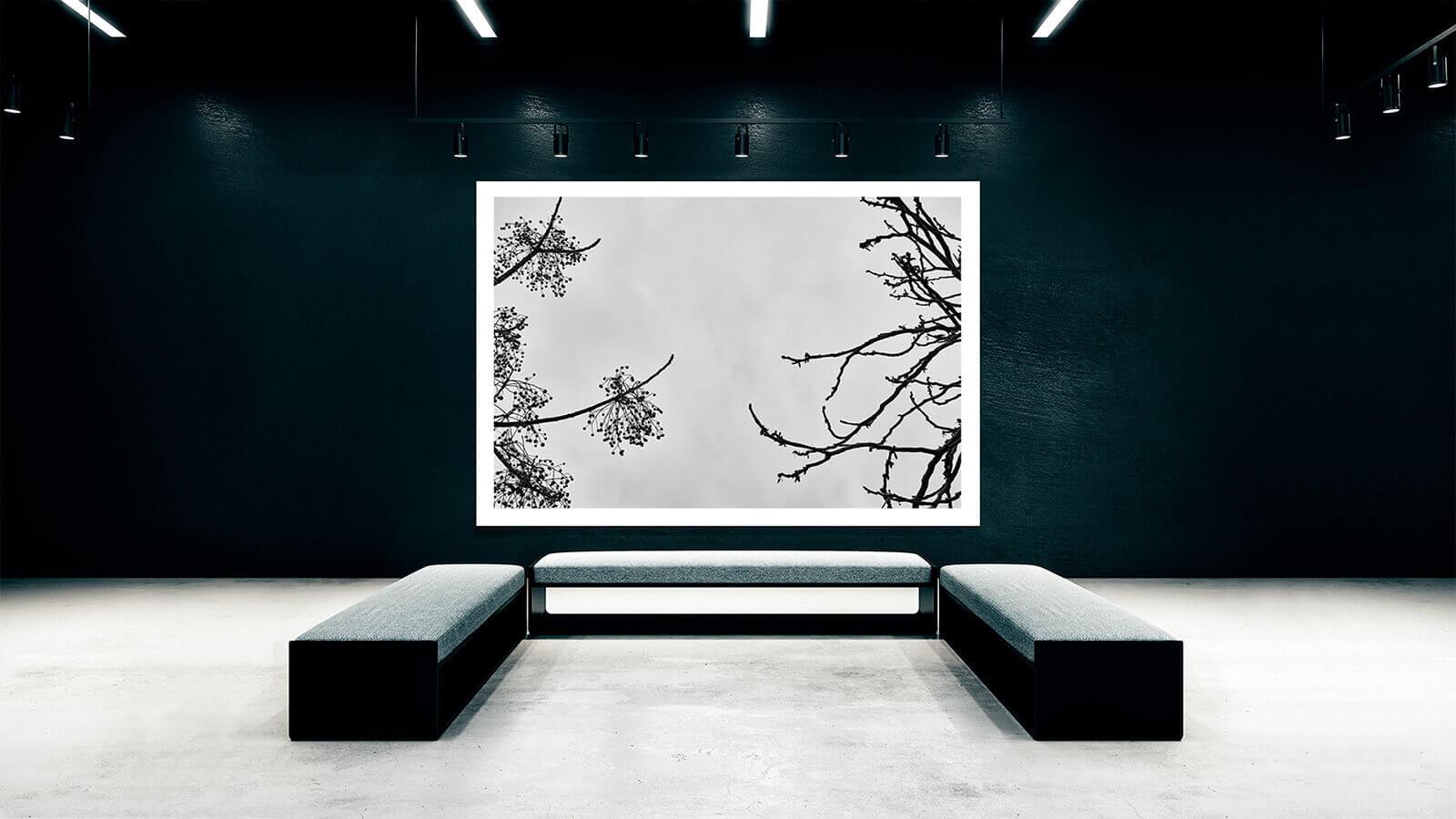 TAIYOKO-STUDIO-exposicion-Horno-Virtual-Gallery-meeting-galeria-arte-fotografia-artistica-edicion-limitada-decoracion