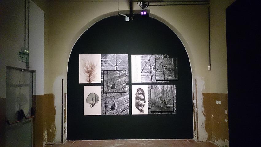 Cristina-De-Middel-Preparados-listos-archivo-accion-2019-exposicion-Horno-Art-Virtual-Gallery-galeria-fotografia-artistica-arte-decoracion-edicion-limitada-tabacalera-13