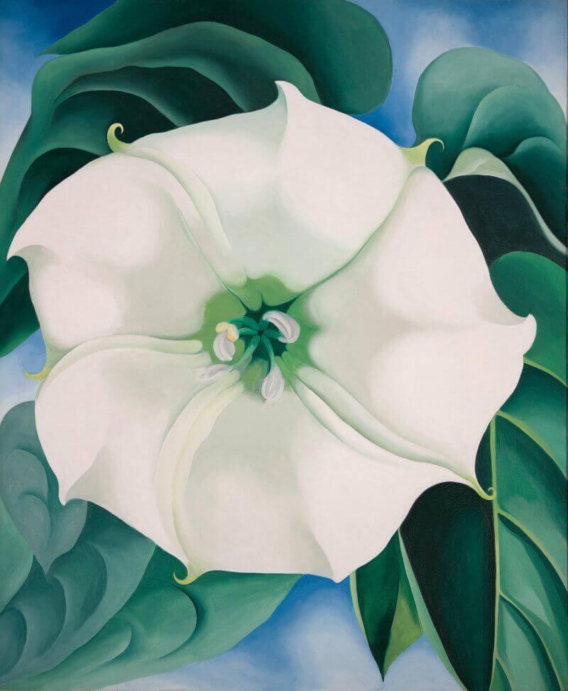 Georgia-okeeffe_flor-blanca-Exposicion-temporal-Museo-Thyssen-Madrid-2021-Horno-Art-Virtual-Gallery-galeria-arte-online-pintura-800x993-800x973
